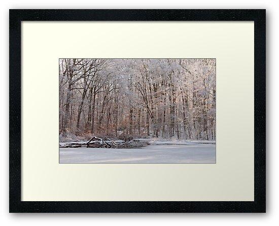 Fresh Coat Of Snow by JHRphotoART
