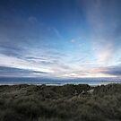 Northumberland Coast by damophoto