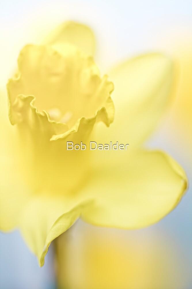 She shines so bright....  by Bob Daalder