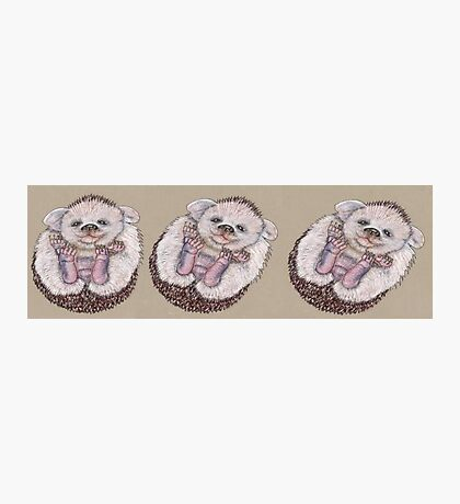 The Roly Poly Hedgehoglet Photographic Print