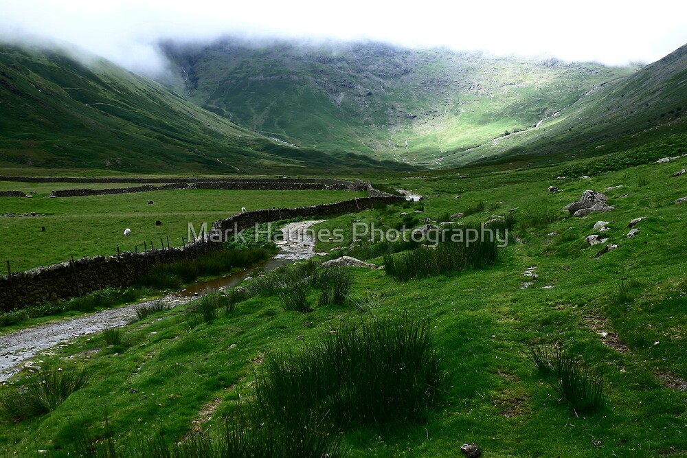 Mickelden Greens by Mark Haynes Photography
