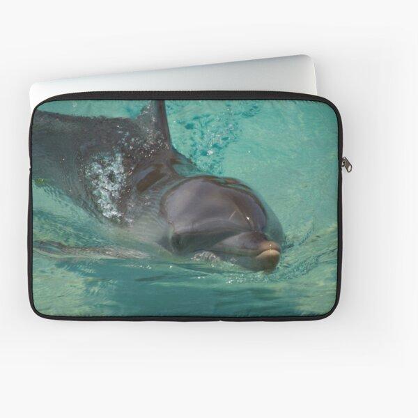 The Dolphin  Laptop Sleeve