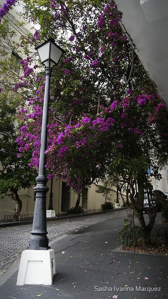 Post and Purple by Sasha Ivanna Marquez