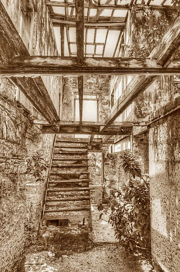 Remains of a house on West Hill Street in Nassau, The Bahamas by Jeremy Lavender Photography
