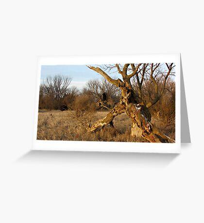 Gnarley Farm Greeting Card