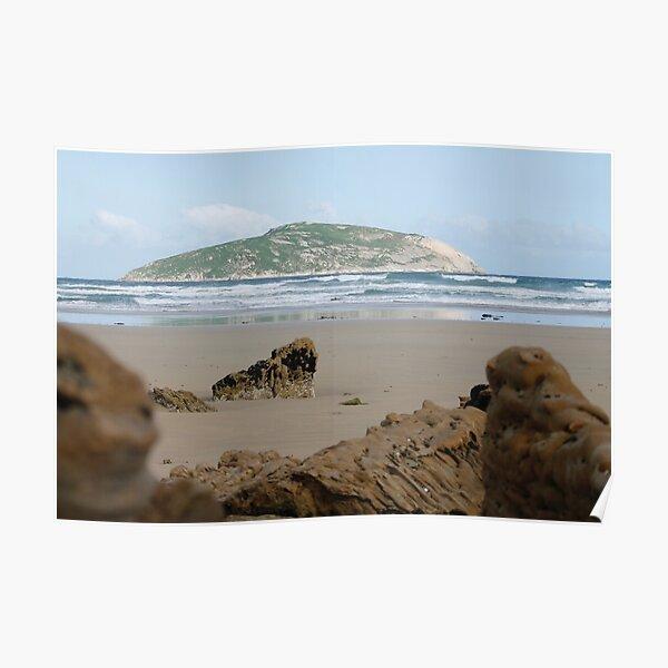 Shellback Island  Poster