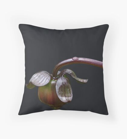 Birth of Beauty Throw Pillow