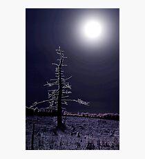desolate moon Photographic Print