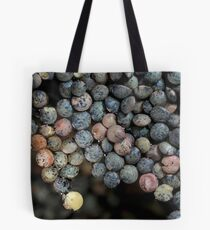 floating continent Tote Bag