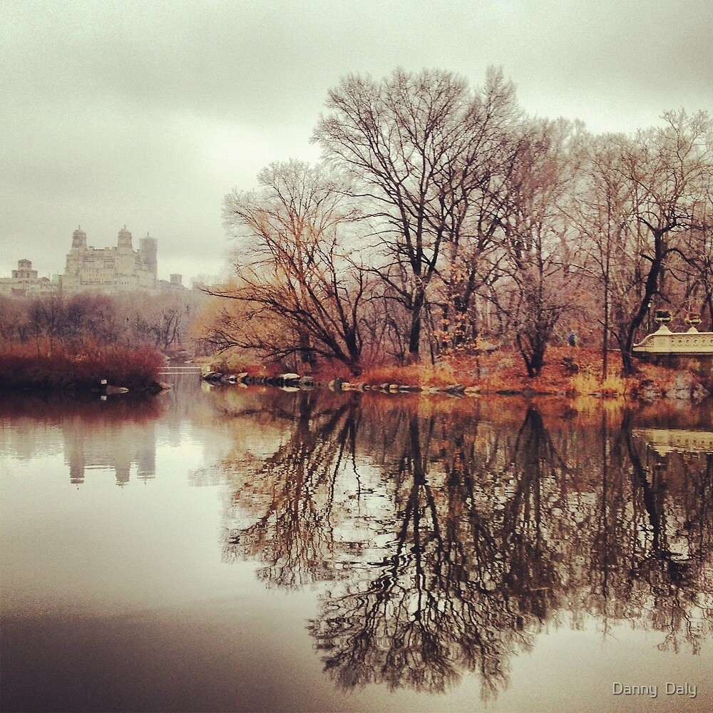 Central Park in reflection winter 2013 by Danny  Daly