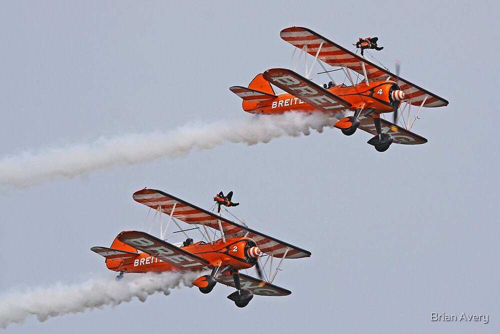 Wing Walkers by Brian Avery