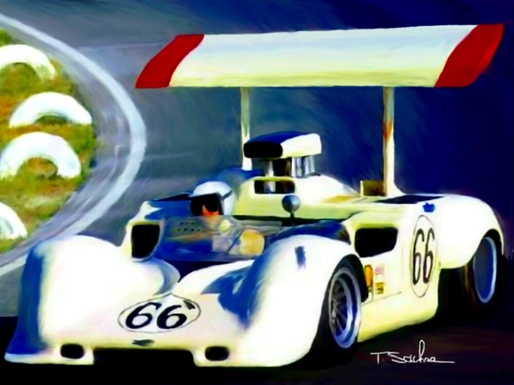 chaparral by Tom Sachse