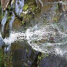 Wandering Falls by Joe Bledsoe