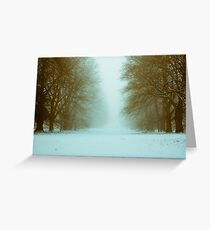 Nowton Park,Winter,Bury St Edmunds,Suffolk,UK Greeting Card