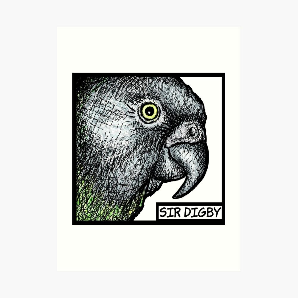"""Sir Digby, 2014"" Art Print"