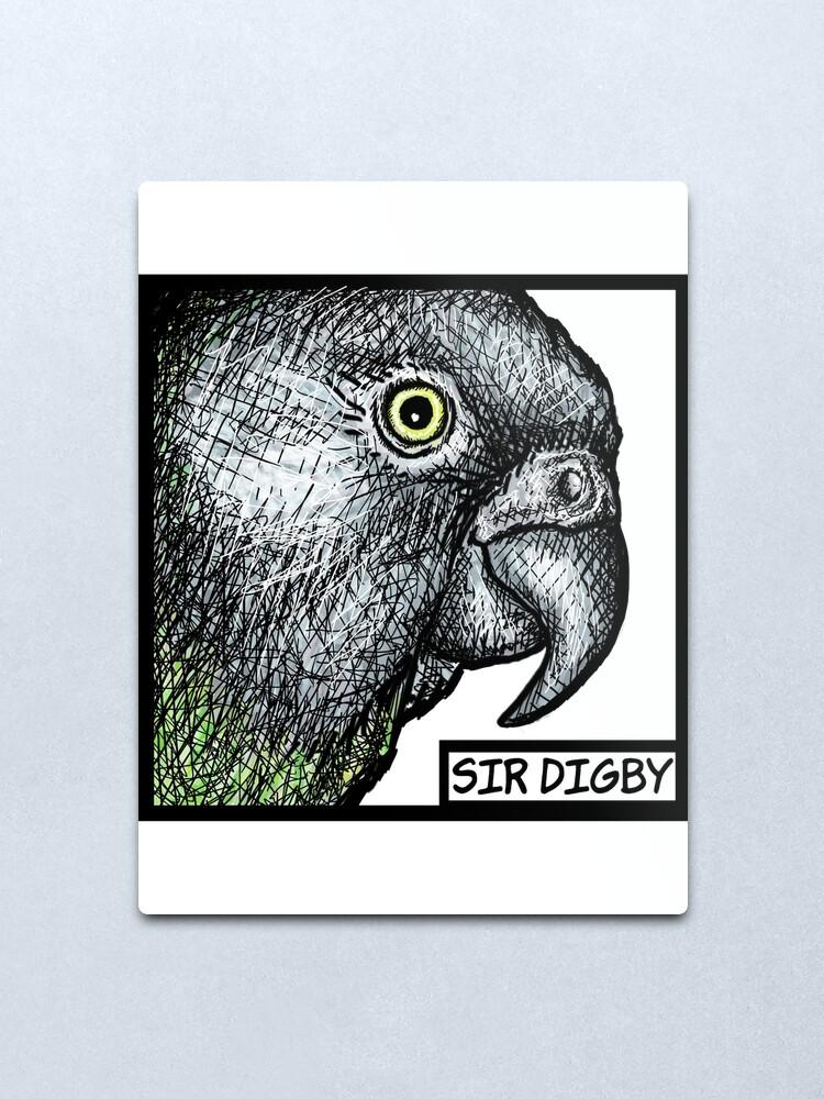 """Alternate view of """"Sir Digby, 2014"""" Metal Print"""