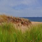Dunes At Plum Island by Dan Perez