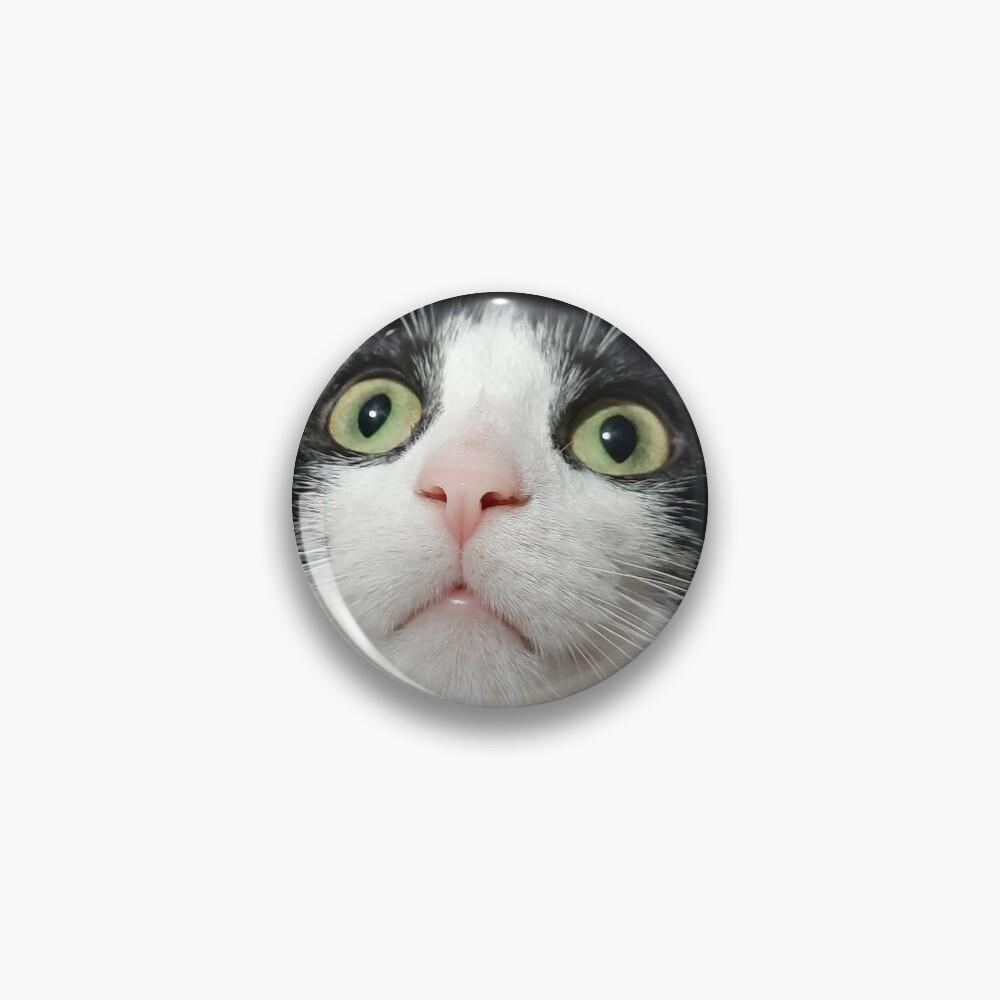 Why no mask kitty? Pin