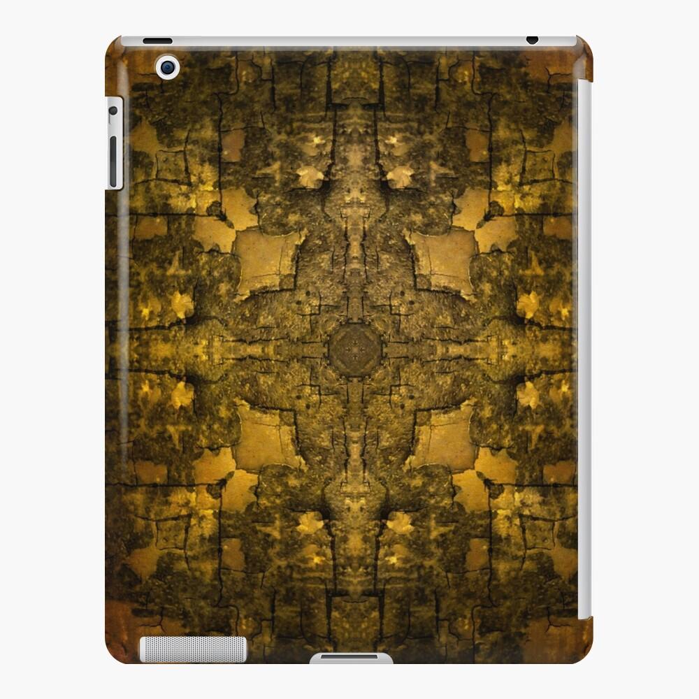 Gold Armour iPad Case & Skin