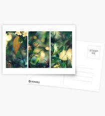 Daydream Believer Postcards
