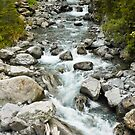 Bealey River, Arthur's Pass by Dilshara Hill