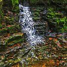 waterfall number 1 by Joe Bledsoe