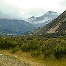 Rugged Mountain Scenery, New Zealand by Dilshara Hill