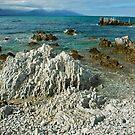 Kaikoura Shore, New Zealand by Dilshara Hill