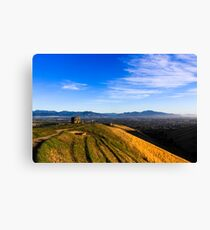 Early Up The Withers Canvas Print