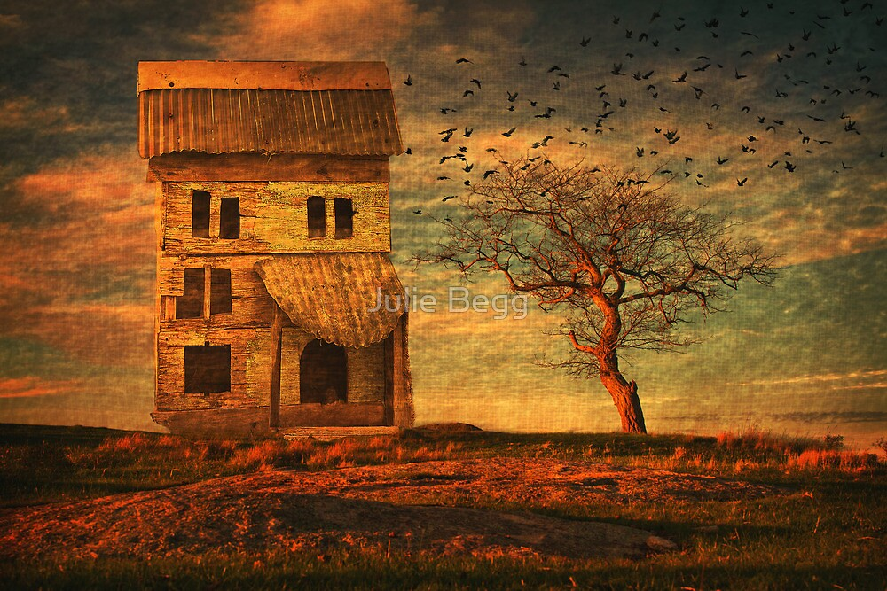 Weathered by Julie Begg