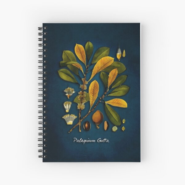 tree Palaquium gutta Spiral Notebook