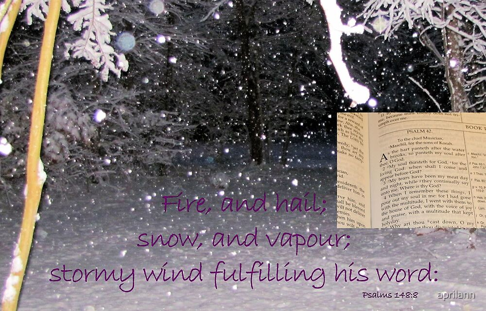 Fulfilling His Word by aprilann