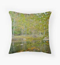 Unami Creek in Autumn Splendor - Green Lane PA Throw Pillow