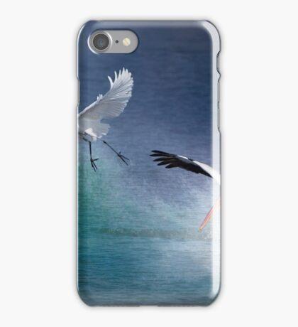 Water Ballet iPhone Case/Skin