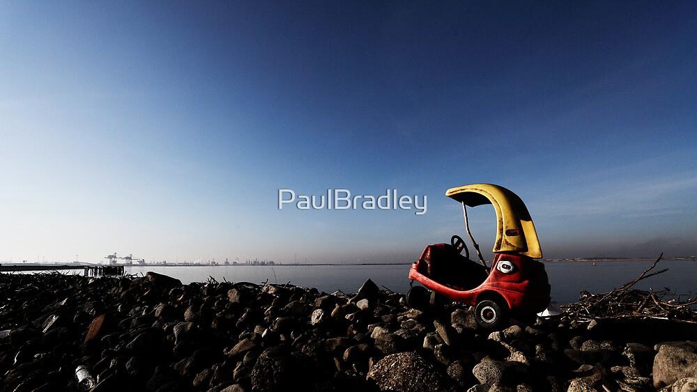 Toy by PaulBradley