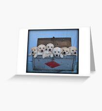 Tool box of Labradors! Greeting Card