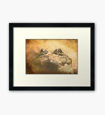 Crocodylus Moreletii Close up Framed Print