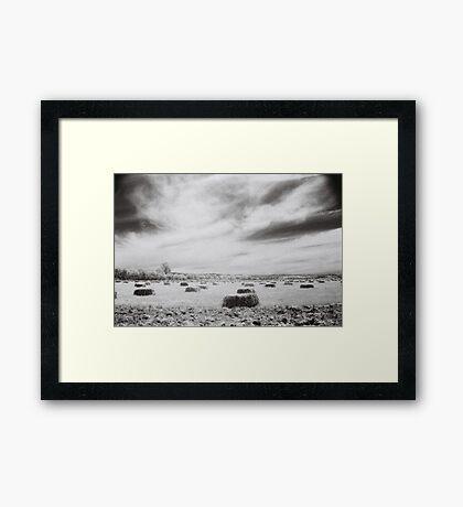 Hay Bales, Wangaratta Framed Print