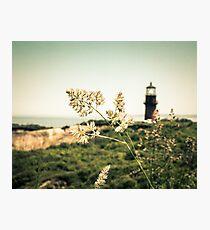 Gay Head Lighthouse, Aquinnah, Martha's Vineyard Photographic Print