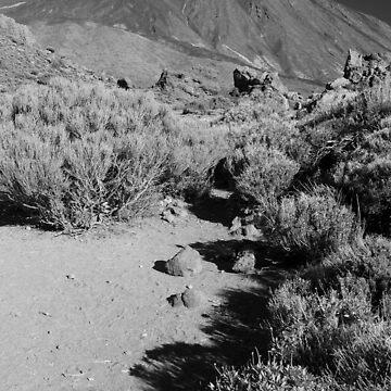 Mt Teide by Zedder
