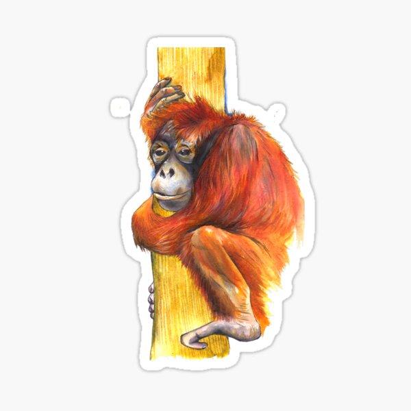 Orangutan Icon Sticker