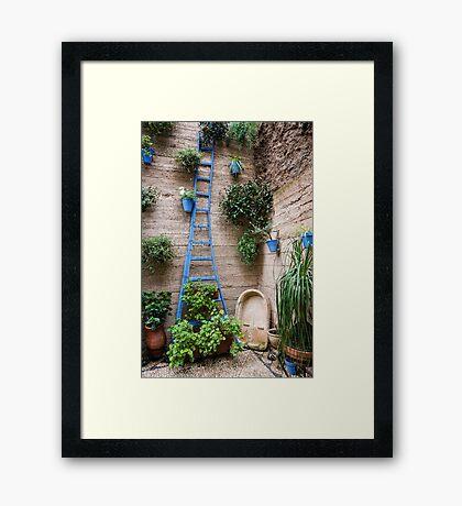 Garden Patio in Cordoba Spain Framed Print