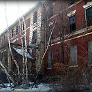 Dorm Overgrown, Abandoned and Empty by Jane Neill-Hancock