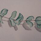 Eucalyptus by Lorelle Gromus