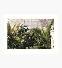 Botanical Gardens Art Print