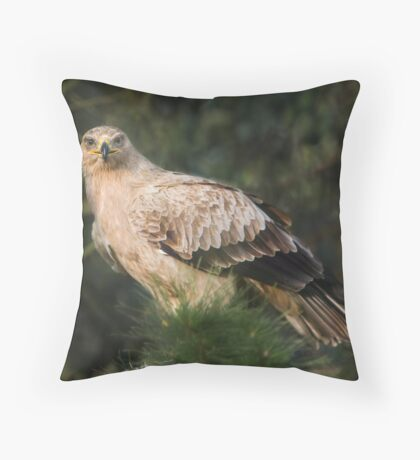 Tawny Eagle Throw Pillow