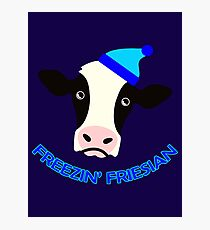 Freezin' Friesian Photographic Print