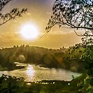 SPITTLE POND NATURE RESERVE by buddybetsy