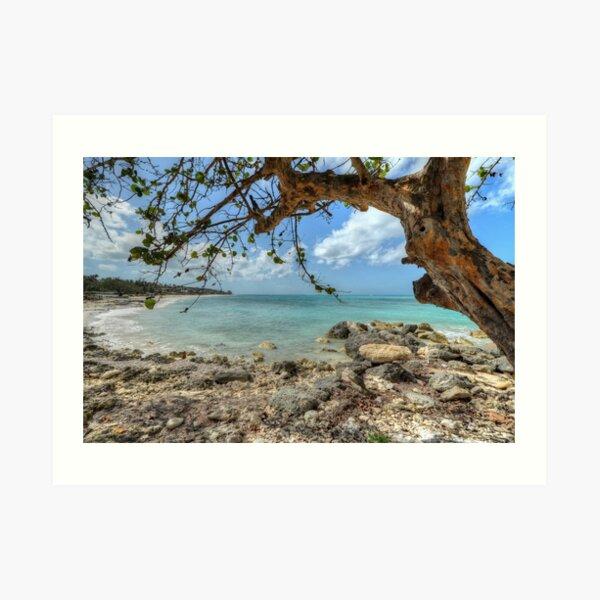 Ocean View at Caves Village in Nassau, The Bahamas Art Print