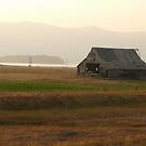 Old Idaho Barn in a Haze by BrianAShaw